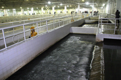 Shurooq, Besix to form wastewater treatment joint venture