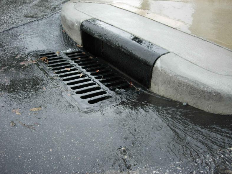 Abu Dhabi, Drainage, Rain, News