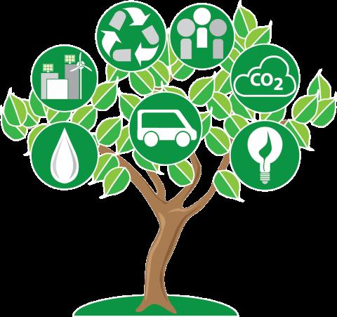Sustainability, Zayed award
